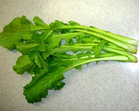 高山真菜(たかやままな)