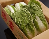 茨城の霜降り白菜(霜降りはくさい)